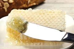 Comb honey Royalty Free Stock Photography