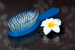 Comb and Pin Stock Image