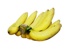 Comb of yellow bananas. Isolate comb of yellow bananas fruit on white background Stock Images