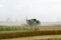 Combain在麦子庄稼收集 在领域的农机 免版税库存照片