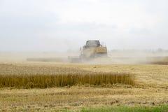 Combain在麦子庄稼收集 在领域的农机 免版税库存图片