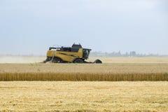 Combain在麦子庄稼收集 在领域的农机 图库摄影