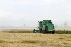 Combain si raccoglie sul raccolto del grano Macchinario agricolo nel campo Fotografia Stock