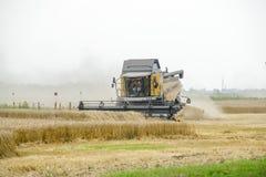 Combain zbiera na pszenicznej uprawie Rolnicza maszyneria w polu Zdjęcia Stock