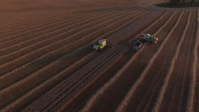 Combaines harvesters and truck on the field stock video footage
