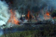 Combat avec l'incendie Photos libres de droits