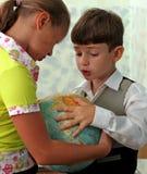 Combat d'enfants Photo stock