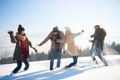 Combat de boule de neige Images stock