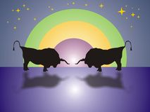 Combat de Bull la nuit Photos stock