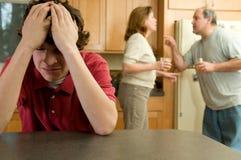 Combat de famille Photos libres de droits
