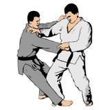 Combat de Ju-jutsu Images libres de droits