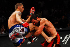 Combat de Tom Evans v. Dominic Warr MMA Image libre de droits
