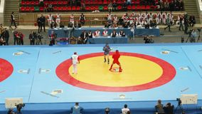 Combat en duel sur le sambo de combat entre les paricipants masculins Les arbitres, les cameraman, et les entraîneurs sont sur le banque de vidéos