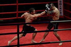 Free Combat Fight Night Stock Photography - 49070422