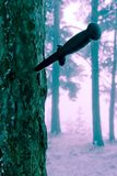 Combat knife. In tree bark, modified background colours royalty free stock images