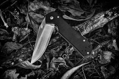 Combat Knife in forest, Army knife in the jungle. Stock Photography