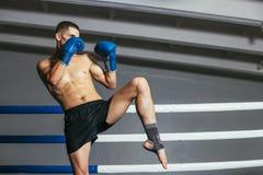 Combat masculin de boxeur dans les gants dans le ring image libre de droits