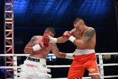 Combat pour la ceinture de champions images stock