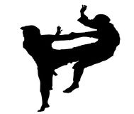 Combat sports man Royalty Free Stock Images