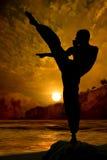 Combatiente de Kung Fu que practica en la puesta del sol Foto de archivo