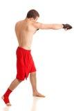 Combatiente de MMA fotografía de archivo libre de regalías