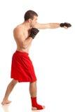 Combatiente de MMA imágenes de archivo libres de regalías