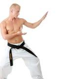Combatiente de Taekwondo Fotografía de archivo