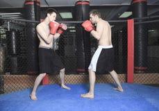 Combatiente de UFC foto de archivo