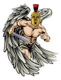 Combatiente del ángel Imagenes de archivo