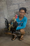 Combatiente del gallo Imagenes de archivo