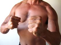 Combatiente del hombre Foto de archivo