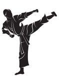Combatiente del karate Foto de archivo
