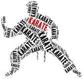 Combatiente del karate Fotografía de archivo libre de regalías