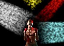 Combatiente listo para luchar Imagen de archivo