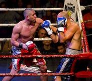Combatientes del boxeo Foto de archivo libre de regalías