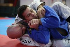 Combatientes del judo Imagen de archivo