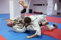 Combatientes del judo Fotografía de archivo libre de regalías