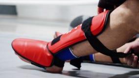 Combattant d'homme de boxeur d'athlète dans les vêtements de sport attachant le bouclier de bandage sur des jambes avant la boxe  banque de vidéos