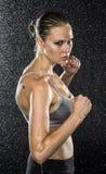 Combattant femelle humide dans la pose de combat semblant féroce image libre de droits