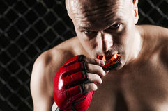 Combattant mélangé d'arts martiaux Photographie stock libre de droits