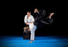 Combattants d'arts martiaux d'isolement image stock