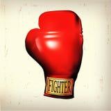 combattente Immagini Stock