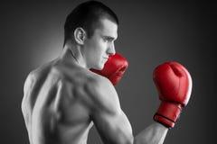 Combattente in bianco e nero con i guanti rossi Immagini Stock Libere da Diritti