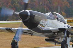 Combattente d'annata del mustang P-51 Fotografia Stock Libera da Diritti