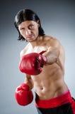 Combattente di arti marziali Immagine Stock