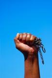 Combattente di libertà Immagini Stock Libere da Diritti