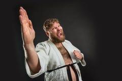 Combattente grasso di karatè Immagini Stock
