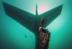 Combattente Jet Tail di voodoo F101 Fotografia Stock Libera da Diritti