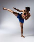 Combattente maschio di pugilato Fotografia Stock Libera da Diritti