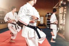 Combattenti di arti marziali sull'allenamento in palestra Immagine Stock